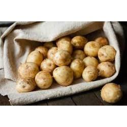 Pommes de terre à frites...